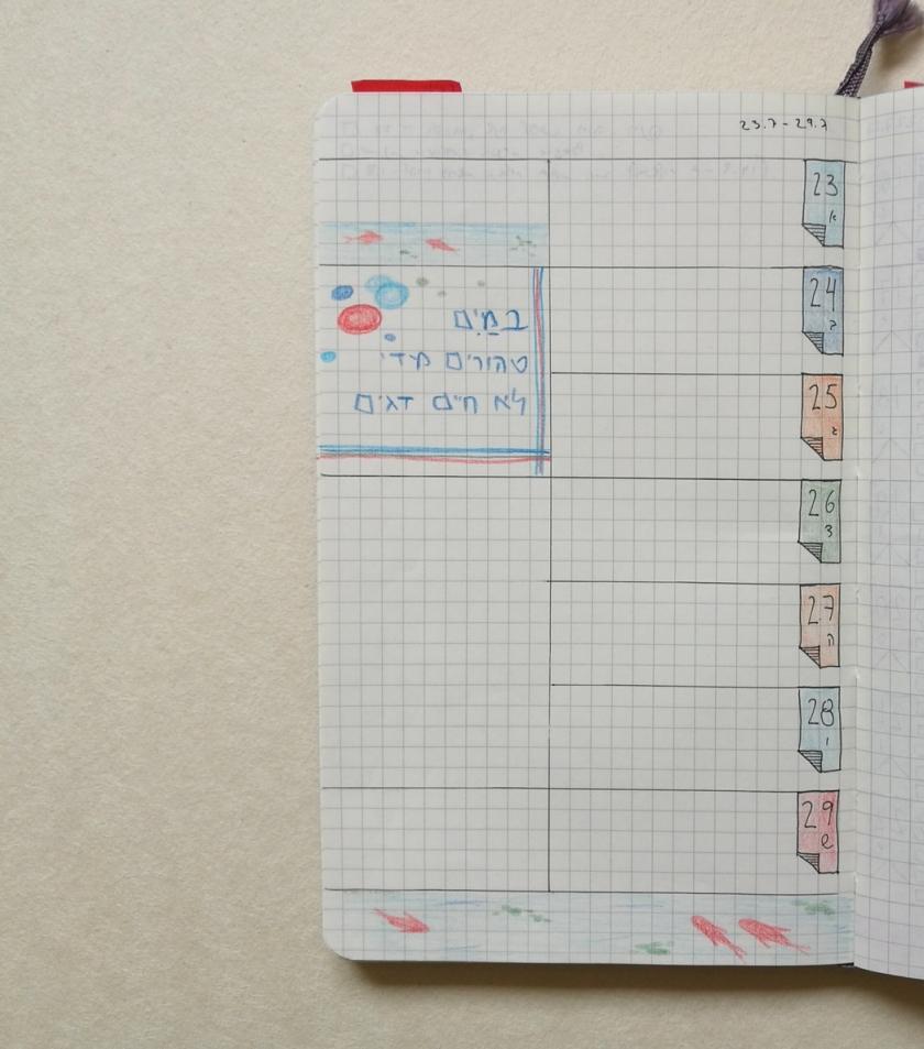 Koi Fish in my Bullet Journal